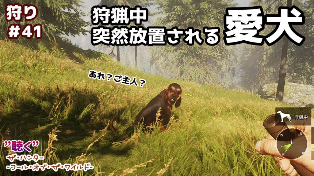 【ASMR】突然放置される狩猟犬【theHunter:CallofTheWild】#41